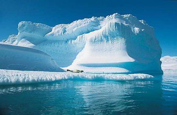 В «Лукойле» создана технология по ликвидации арктических разливов нефти