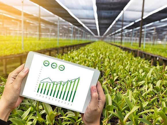 Новые IT-профессии в агропроме